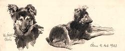 Robert Sterl: Zwei Hundedarstellungen